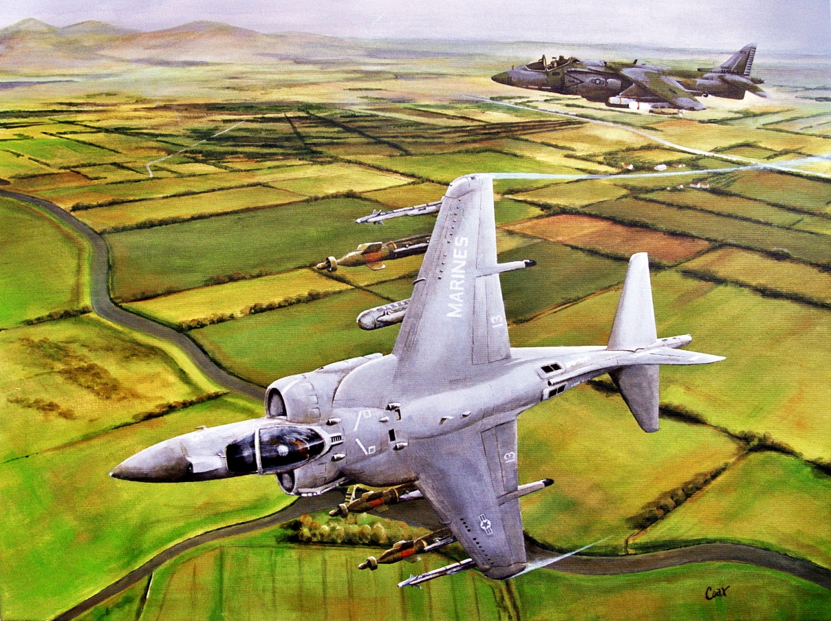 Harrier in flight painting